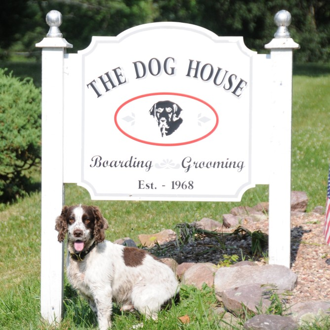 Angus greets his guests at the Dog House Kennel located at 21 Homestead Road in Pottersville, NJ!