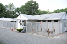 The Dog House Kennel Photo Gallery